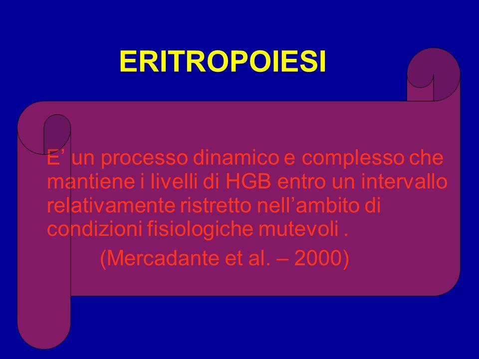 ERITROPOIESI E un processo dinamico e complesso che mantiene i livelli di HGB entro un intervallo relativamente ristretto nellambito di condizioni fis