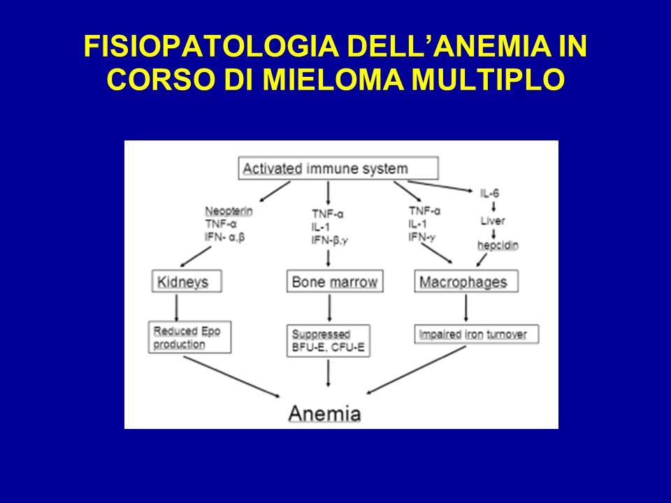 PREVALENZA DELLANEMIA NEL MM ALLA DIAGNOSI Studio Definizione Anemia % pt anemici Kyle (1975) Hb<12g/dl 62% Steurer (2001) Hb<12g/dl 77% Beguin (1992) HCT 50% San Miguel (1995) Hb < 10.5 g/dl 68% Maclennan (1994) Hb <10 g/dl 45% Durie (1975) Hb < 8.5 g/dl 21% Ludwig H et al.