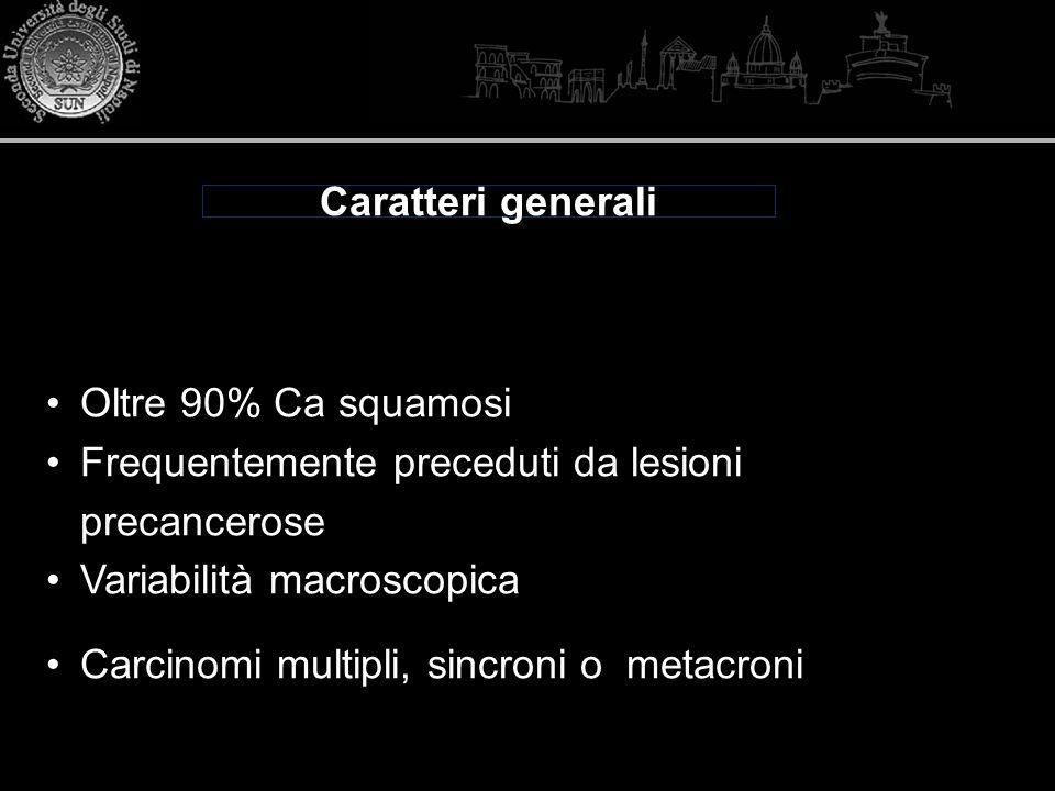 Caratteri generali Oltre 90% Ca squamosi Frequentemente preceduti da lesioni precancerose Variabilità macroscopica Carcinomi multipli, sincroni o meta