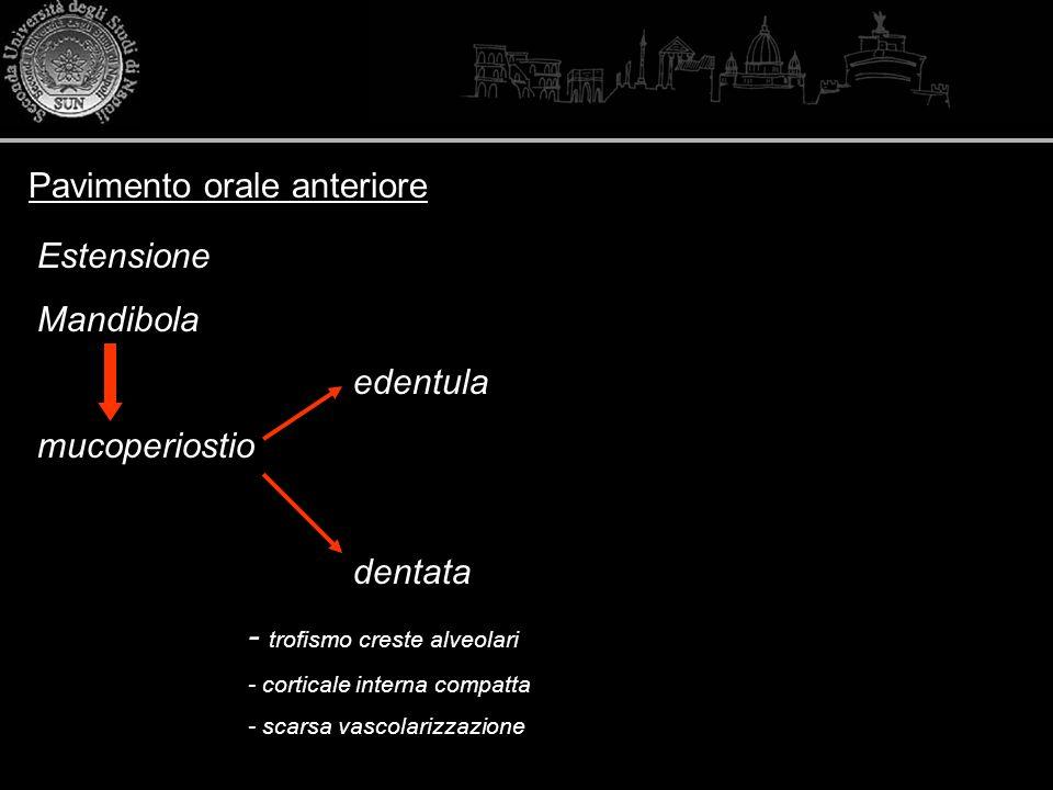 Pavimento orale anteriore Estensione Mandibola edentula mucoperiostio dentata - trofismo creste alveolari - corticale interna compatta - scarsa vascol