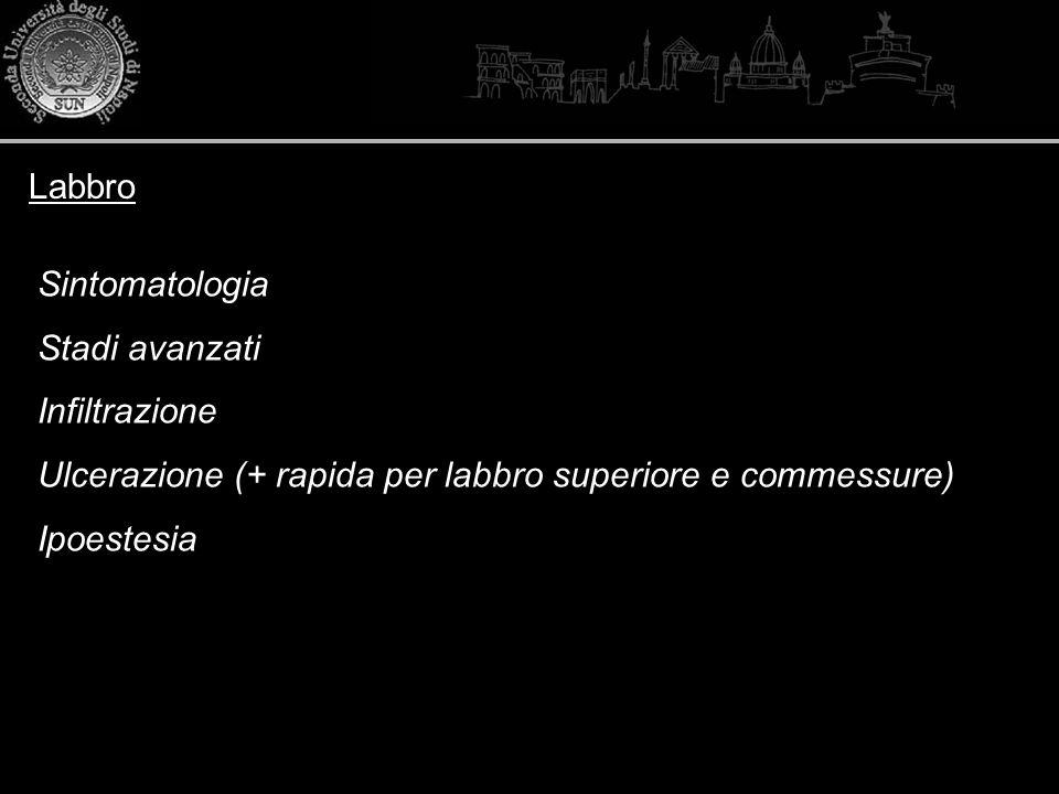 Labbro Sintomatologia Stadi avanzati Infiltrazione Ulcerazione (+ rapida per labbro superiore e commessure) Ipoestesia