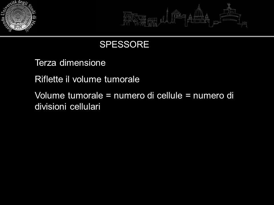SPESSORE Terza dimensione Riflette il volume tumorale Volume tumorale = numero di cellule = numero di divisioni cellulari