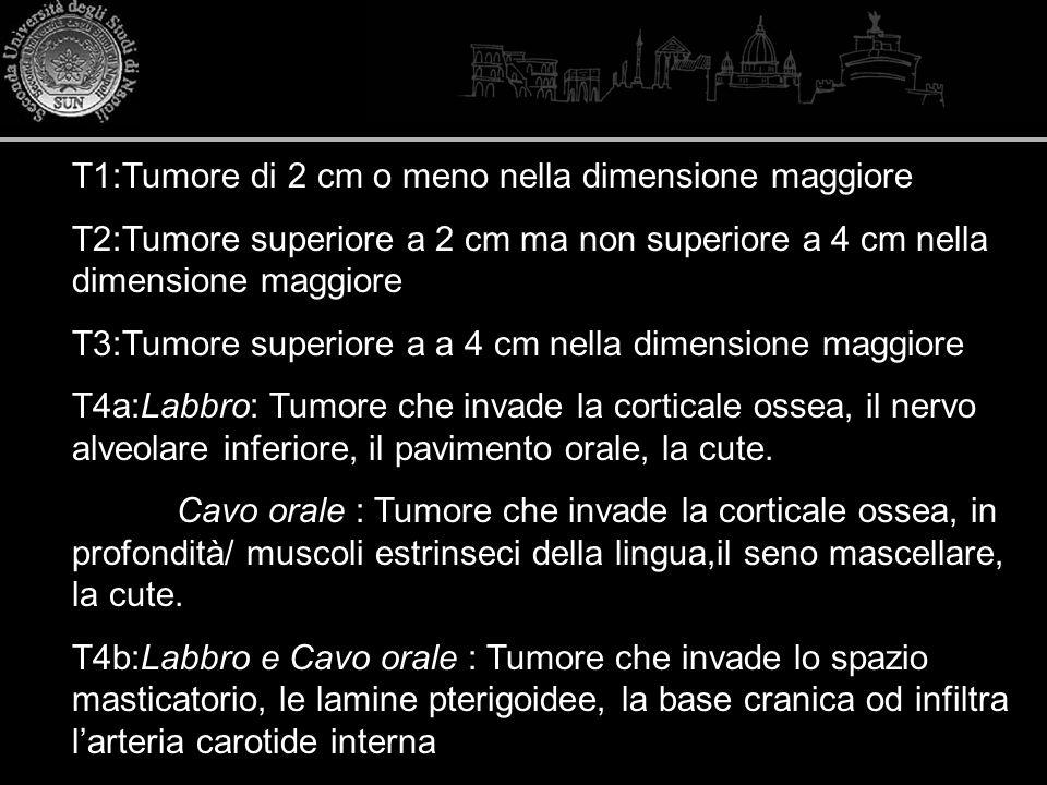 T1:Tumore di 2 cm o meno nella dimensione maggiore T2:Tumore superiore a 2 cm ma non superiore a 4 cm nella dimensione maggiore T3:Tumore superiore a