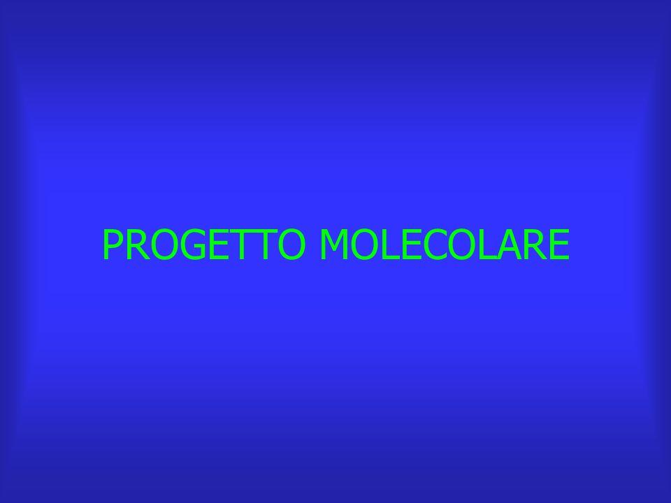 PROGETTO MOLECOLARE
