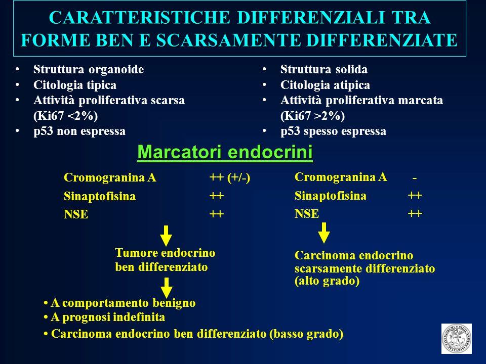 MARCATORI BIOUMORALI ASPECIFICI Cromogranina A NSE PP MARCATORI BIOUMORALI SPECIFICI Insulina (peptide C) 5-HIAA Gastrina VIP Glucagone Somatostatina