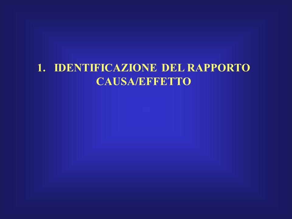 1. IDENTIFICAZIONE DEL RAPPORTO CAUSA/EFFETTO