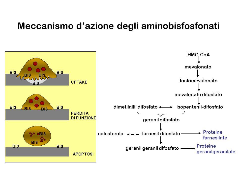 Potenza relativa in vitroin vivo Etidronato 11 Clodronato8 10 Pamidronato 550 100 Alendronato 700 700 Ibandronato 5000 4000 Acido zoledronico 10000 10000 Attività inibente il riassorbimento osseo