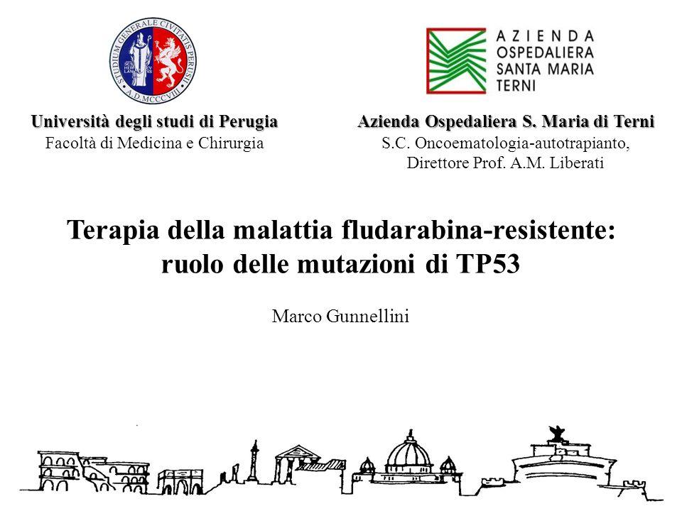 Azienda Ospedaliera S. Maria di Terni S.C. Oncoematologia-autotrapianto, Direttore Prof. A.M. Liberati Terapia della malattia fludarabina-resistente: