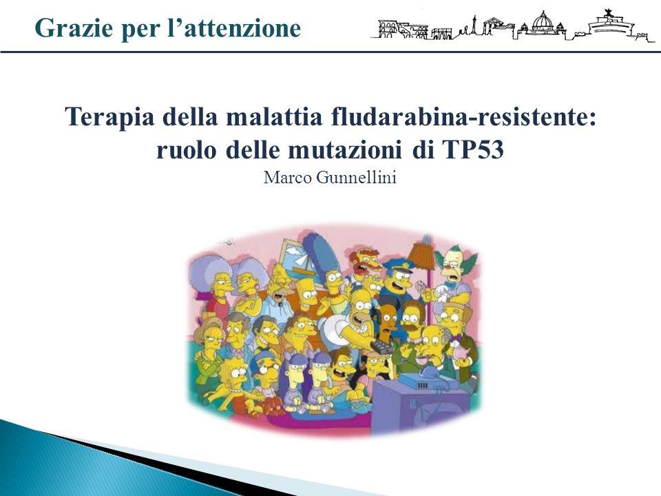 Grazie per lattenzione Terapia della malattia fludarabina-resistente: ruolo delle mutazioni di TP53 Marco Gunnellini