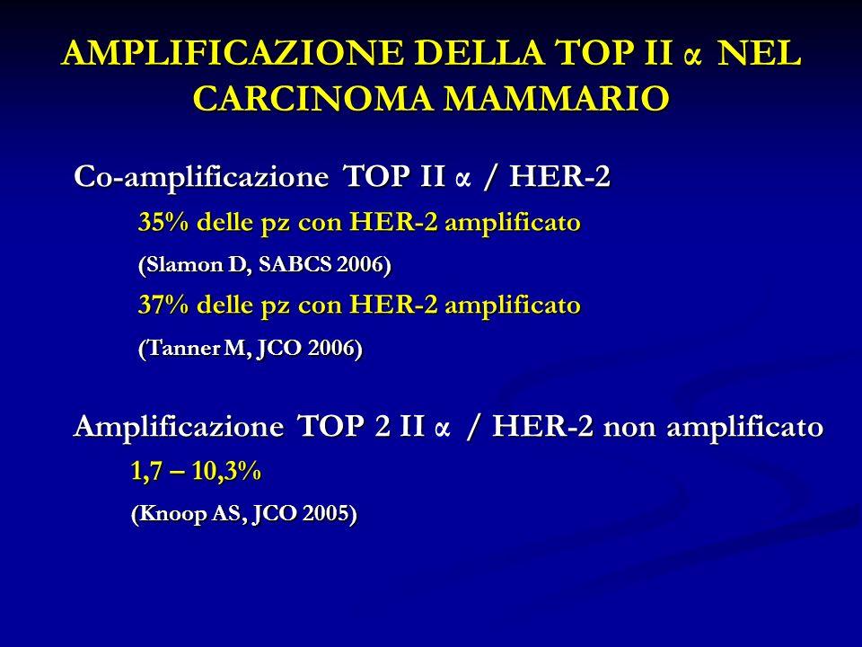 AMPLIFICAZIONE DELLA TOP II NEL CARCINOMA MAMMARIO AMPLIFICAZIONE DELLA TOP II α NEL CARCINOMA MAMMARIO Co-amplificazione TOP II / HER-2 Co-amplificaz