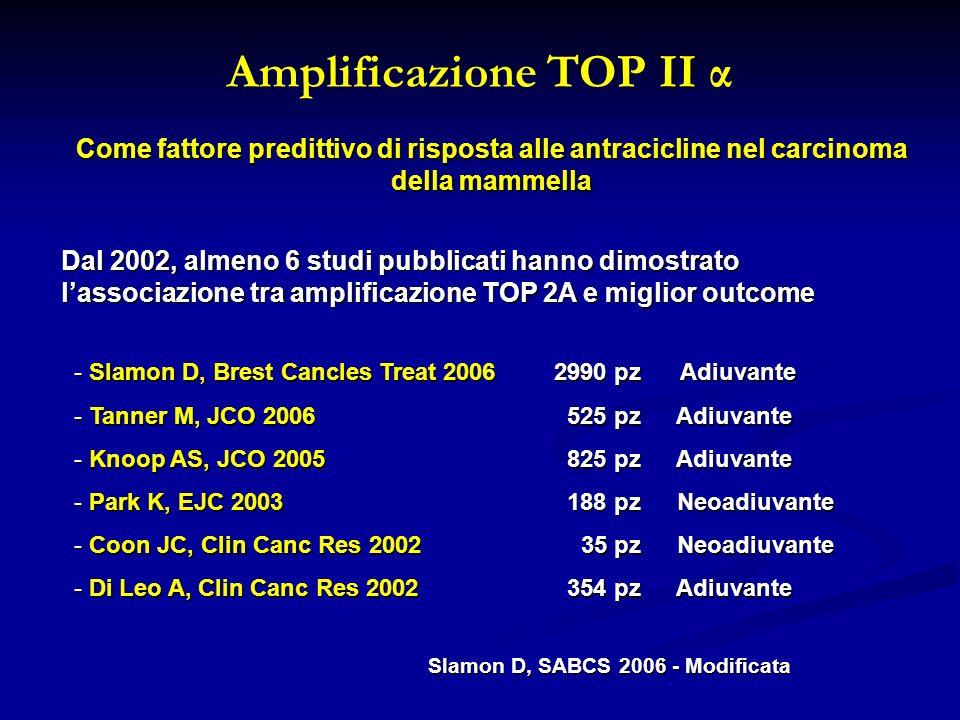 II Amplificazione TOP II α Come fattore predittivo di risposta alle antracicline nel carcinoma della mammella Dal 2002, almeno 6 studi pubblicati hann