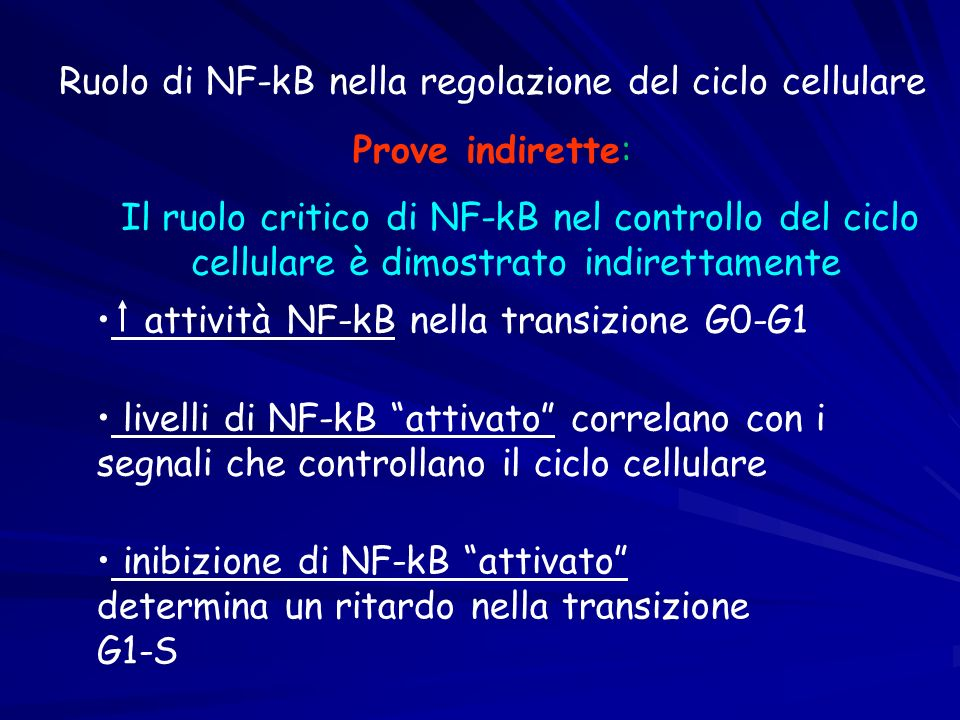 Ruolo di NF-kB nella regolazione del ciclo cellulare Prove indirette: Il ruolo critico di NF-kB nel controllo del ciclo cellulare è dimostrato indiret