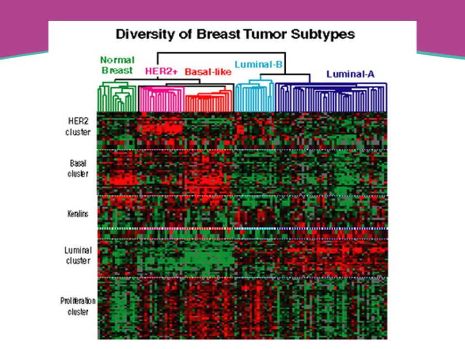 SubtypeThese tumors tend to beApproximate prevalence Luminal AER+, PR+, HER2-42-55% Luminal BER+, PR+, HER2+16-19% Basal-likeER-, PR-, HER2-, cytokeratin 5/6 + and/or HER1+ 13-25% HER2+ER-, PR-, HER2+7-12% Normal breast- like ER+6-10%