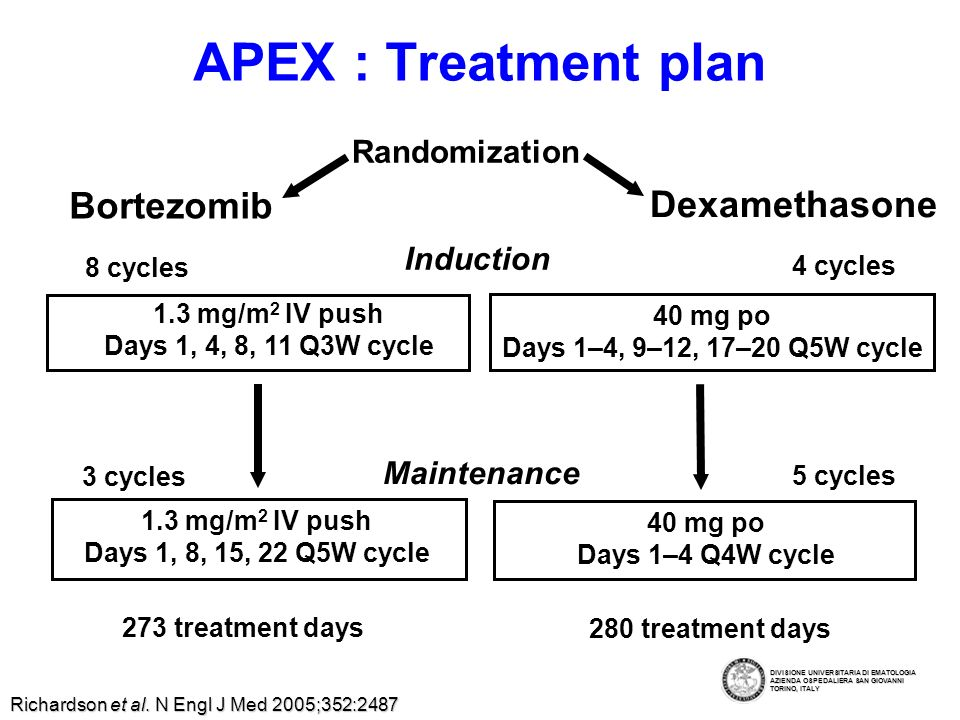APEX : Treatment plan 273 treatment days 280 treatment days 1.3 mg/m 2 IV push Days 1, 4, 8, 11 Q3W cycle 8 cycles 1.3 mg/m 2 IV push Days 1, 8, 15, 22 Q5W cycle 4 cycles 3 cycles 5 cycles 40 mg po Days 1–4, 9–12, 17–20 Q5W cycle 40 mg po Days 1–4 Q4W cycle Randomization Bortezomib Dexamethasone Induction Maintenance Richardson et al.