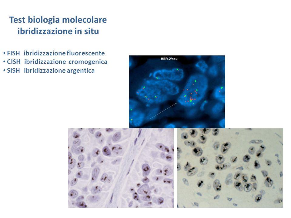 Test biologia molecolare ibridizzazione in situ FISH ibridizzazione fluorescente CISH ibridizzazione cromogenica SISH ibridizzazione argentica
