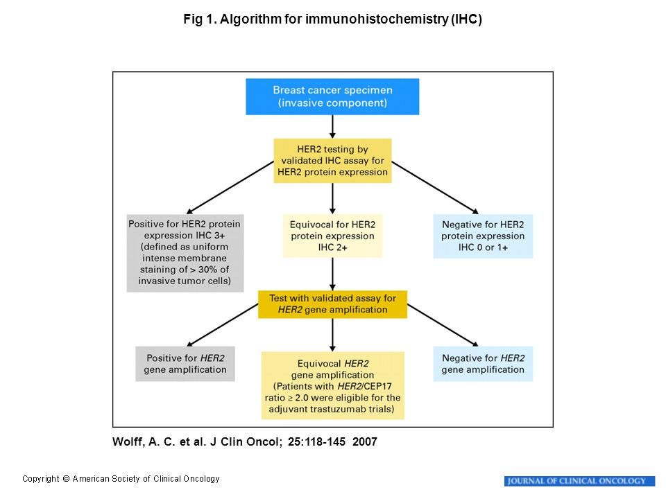 Wolff, A. C. et al. J Clin Oncol; 25:118-145 2007 Fig 1. Algorithm for immunohistochemistry (IHC)