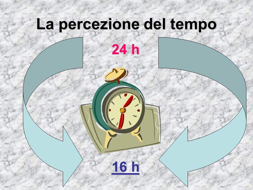 La percezione del tempo 24 h 16 h