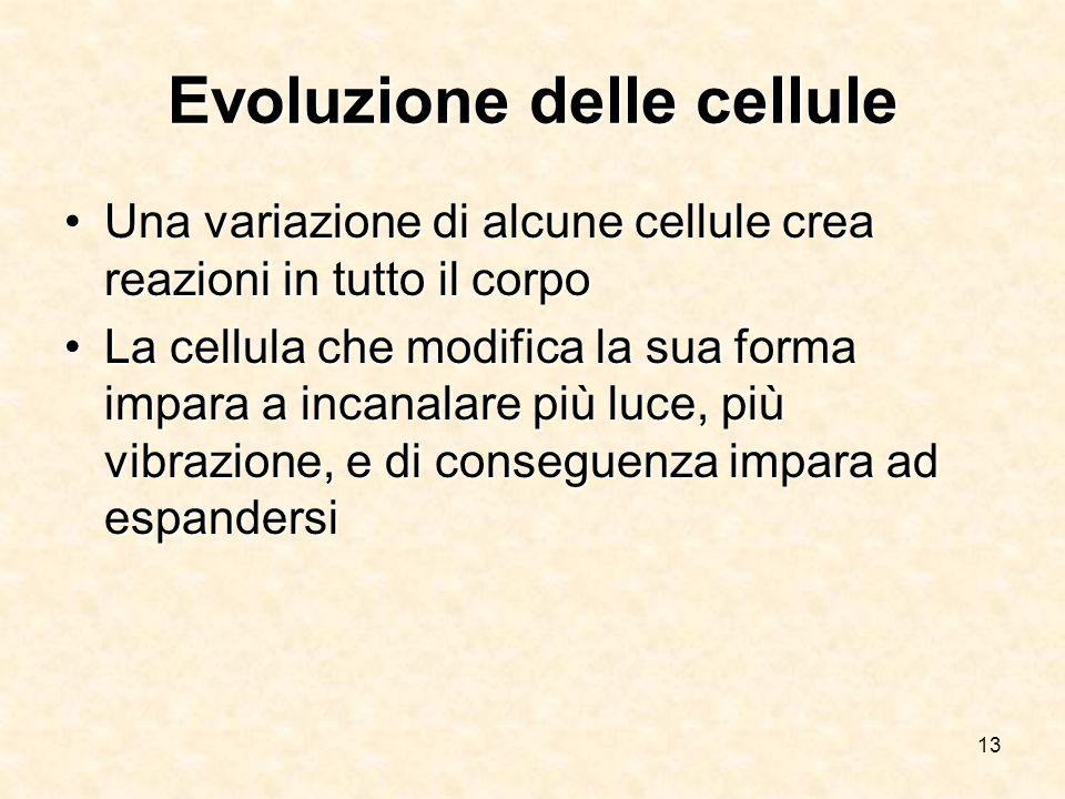13 Evoluzione delle cellule Una variazione di alcune cellule crea reazioni in tutto il corpoUna variazione di alcune cellule crea reazioni in tutto il