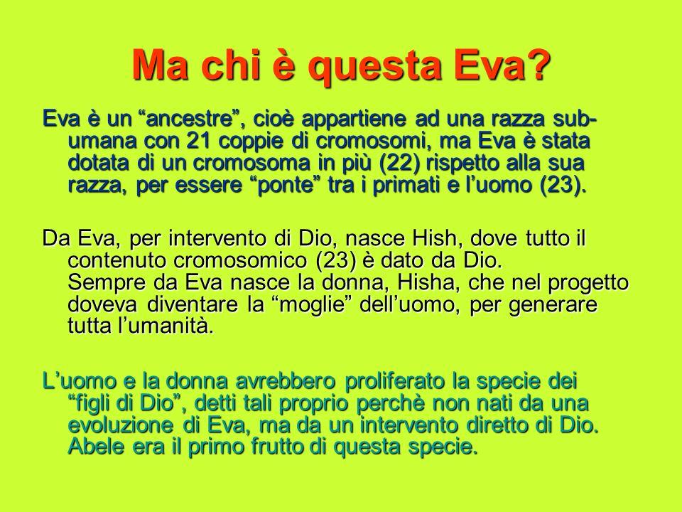 Ma chi è questa Eva? Eva è un ancestre, cioè appartiene ad una razza sub- umana con 21 coppie di cromosomi, ma Eva è stata dotata di un cromosoma in p