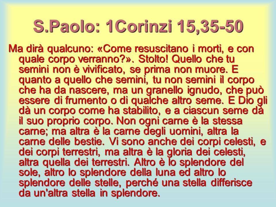 S.Paolo: 1Corinzi 15,35-50 Ma dirà qualcuno: «Come resuscitano i morti, e con quale corpo verranno?». Stolto! Quello che tu semini non è vivificato, s
