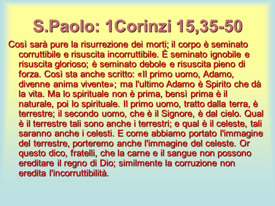 S.Paolo: 1Corinzi 15,35-50 Così sarà pure la risurrezione dei morti; il corpo è seminato corruttibile e risuscita incorruttibile. È seminato ignobile