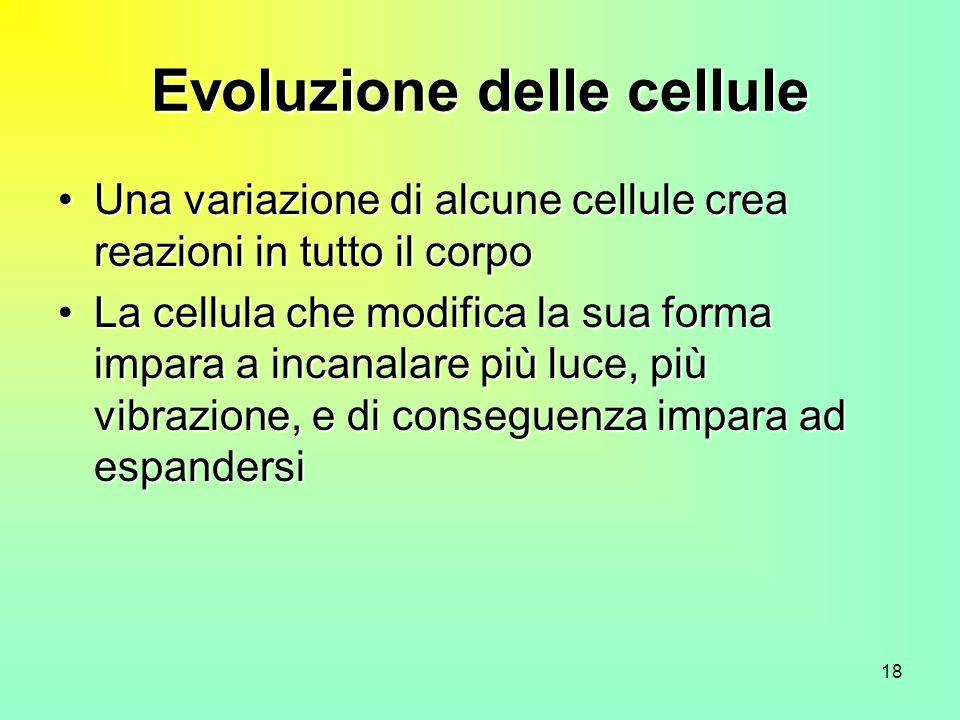18 Evoluzione delle cellule Una variazione di alcune cellule crea reazioni in tutto il corpoUna variazione di alcune cellule crea reazioni in tutto il corpo La cellula che modifica la sua forma impara a incanalare più luce, più vibrazione, e di conseguenza impara ad espandersiLa cellula che modifica la sua forma impara a incanalare più luce, più vibrazione, e di conseguenza impara ad espandersi