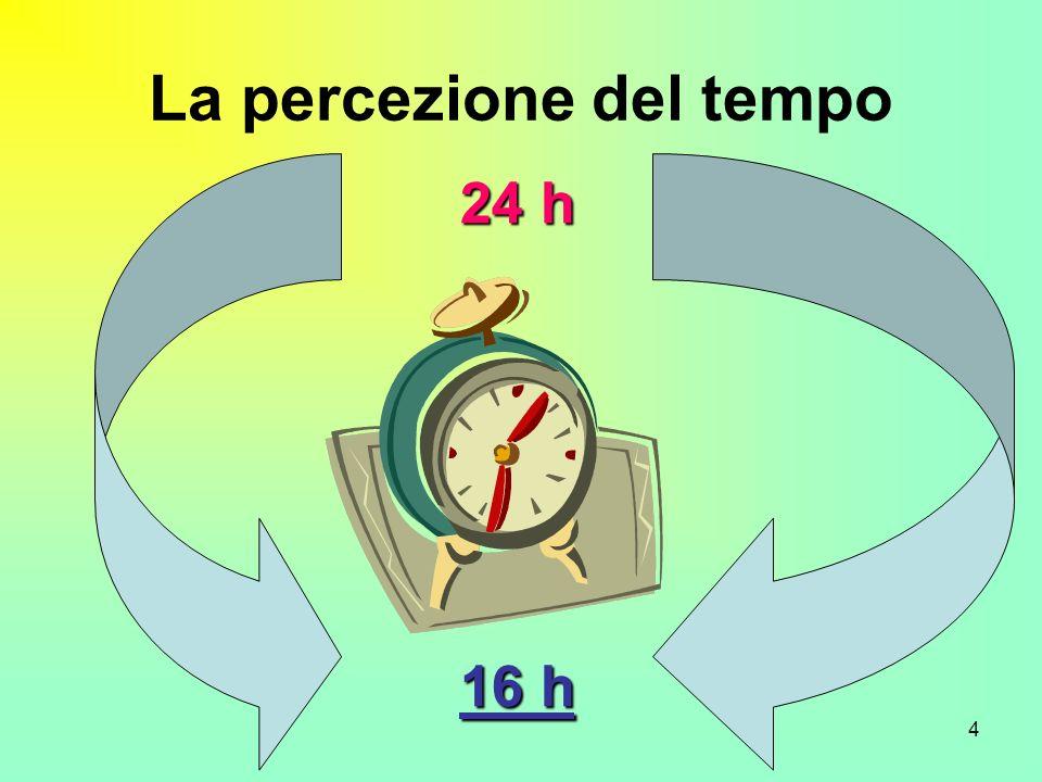4 La percezione del tempo 24 h 16 h