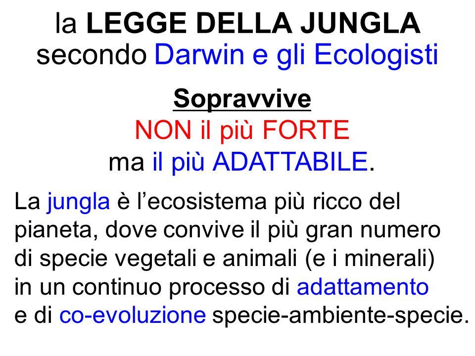 la LEGGE DELLA JUNGLA secondo Darwin e gli Ecologisti Sopravvive NON il più FORTE ma il più ADATTABILE.