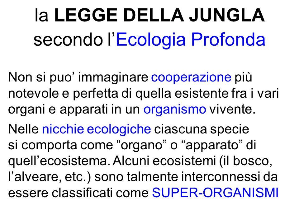 la LEGGE DELLA JUNGLA secondo lEcologia Profonda Non si puo immaginare cooperazione più notevole e perfetta di quella esistente fra i vari organi e apparati in un organismo vivente.