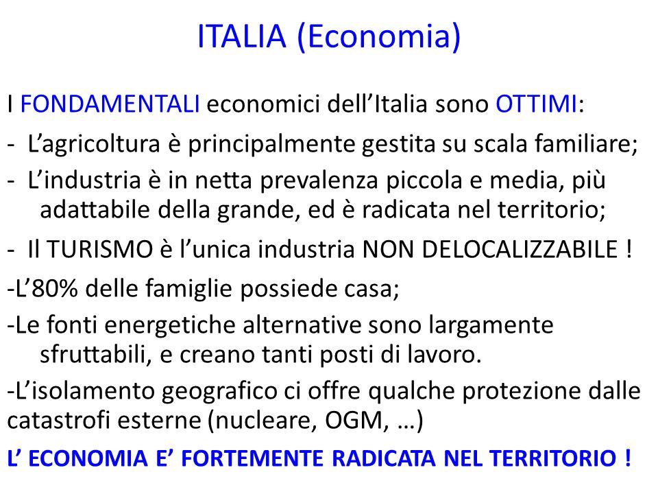 ITALIA (Economia) I FONDAMENTALI economici dellItalia sono OTTIMI: - Lagricoltura è principalmente gestita su scala familiare; - Lindustria è in netta prevalenza piccola e media, più adattabile della grande, ed è radicata nel territorio; - Il TURISMO è lunica industria NON DELOCALIZZABILE .