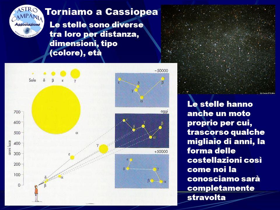 Torniamo a Cassiopea Le stelle sono diverse tra loro per distanza, dimensioni, tipo (colore), età Le stelle hanno anche un moto proprio per cui, trascorso qualche migliaio di anni, la forma delle costellazioni così come noi la conosciamo sarà completamente stravolta