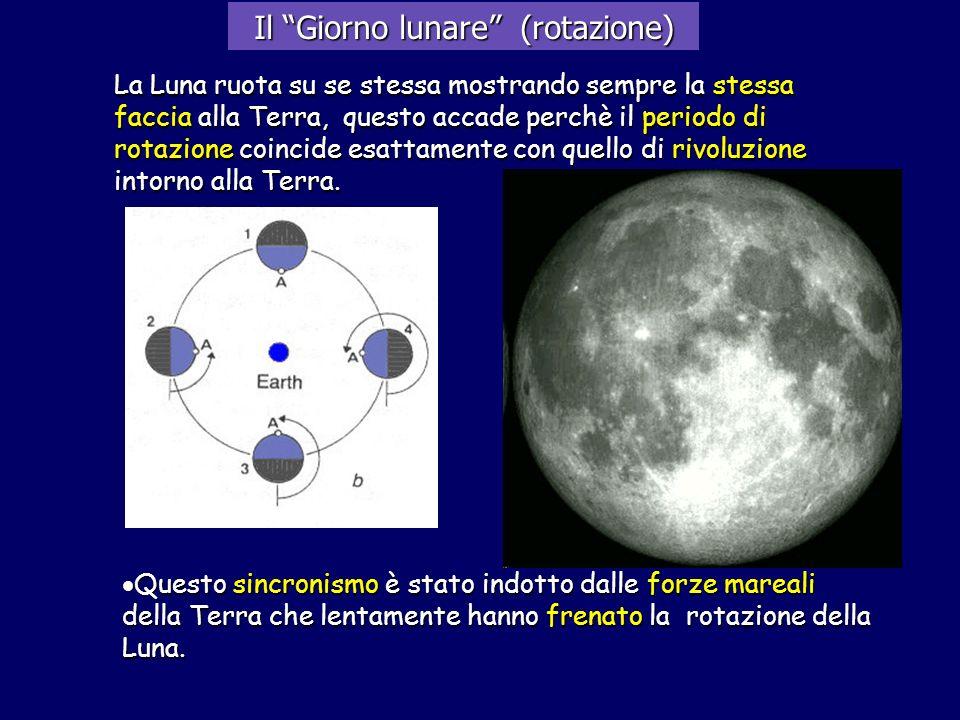 Il Giorno lunare (rotazione) La Luna ruota su se stessa mostrando sempre la stessa faccia alla Terra, questo accade perchè il periodo di rotazione coi