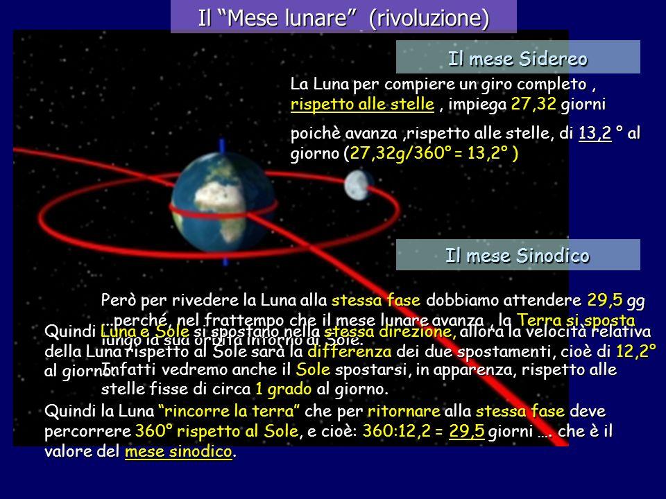 Però per rivedere la Luna alla stessa fase dobbiamo attendere 29,5 gg...perché, nel frattempo che il mese lunare avanza, la Terra si sposta lungo la s