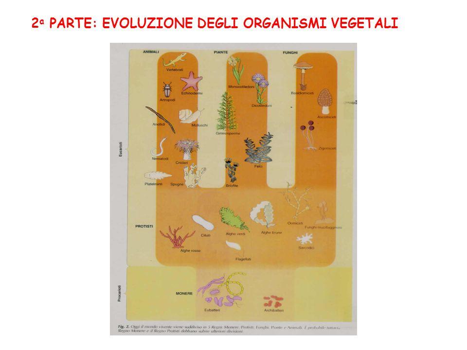 2 a PARTE: EVOLUZIONE DEGLI ORGANISMI VEGETALI