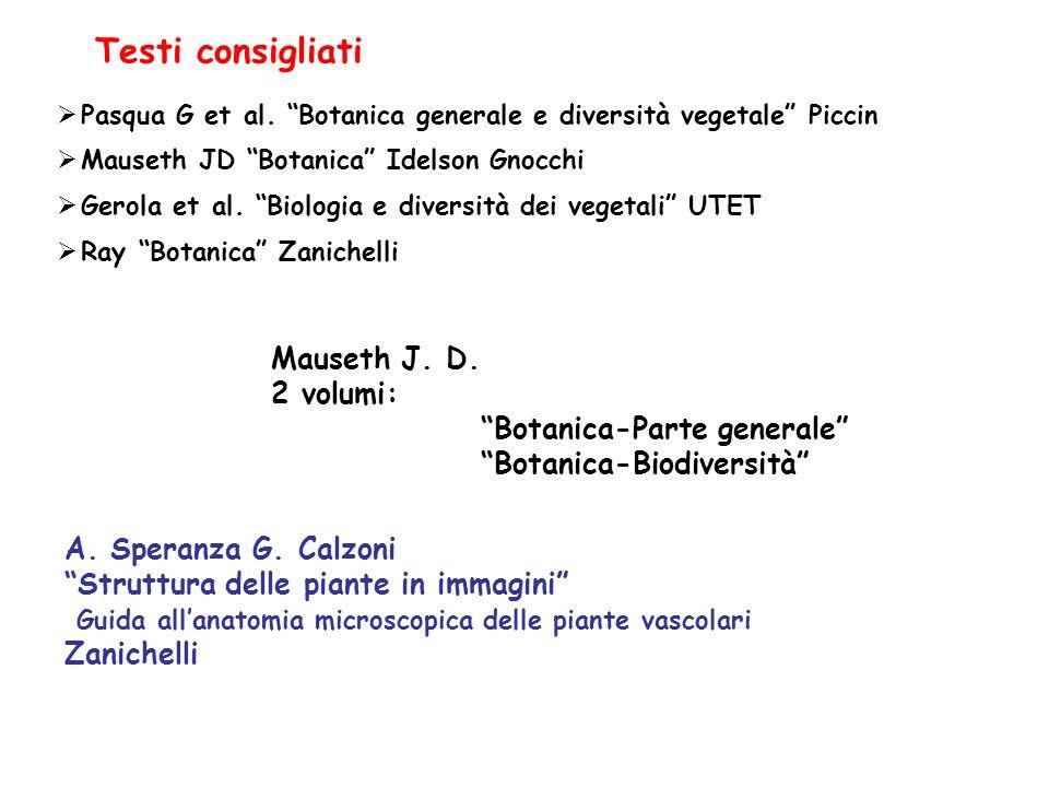 Mauseth J.D. 2 volumi: Botanica-Parte generale Botanica-Biodiversità Testi consigliati A.