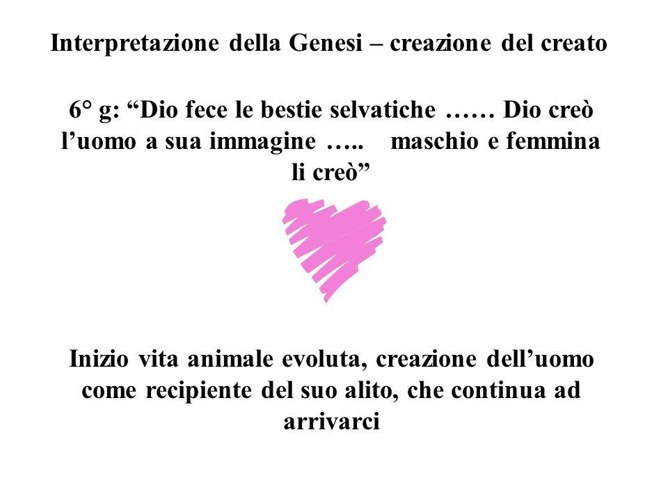 Interpretazione della Genesi – creazione del creato 6° g: Dio fece le bestie selvatiche …… Dio creò luomo a sua immagine …..