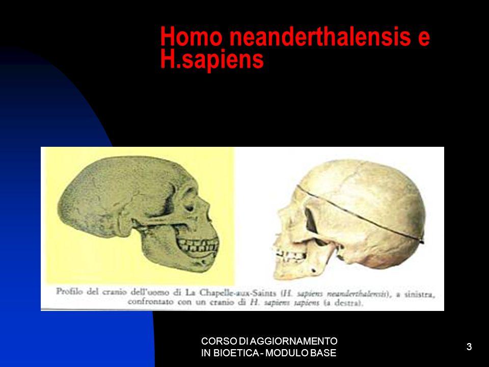 CORSO DI AGGIORNAMENTO IN BIOETICA - MODULO BASE 3 Homo neanderthalensis e H.sapiens