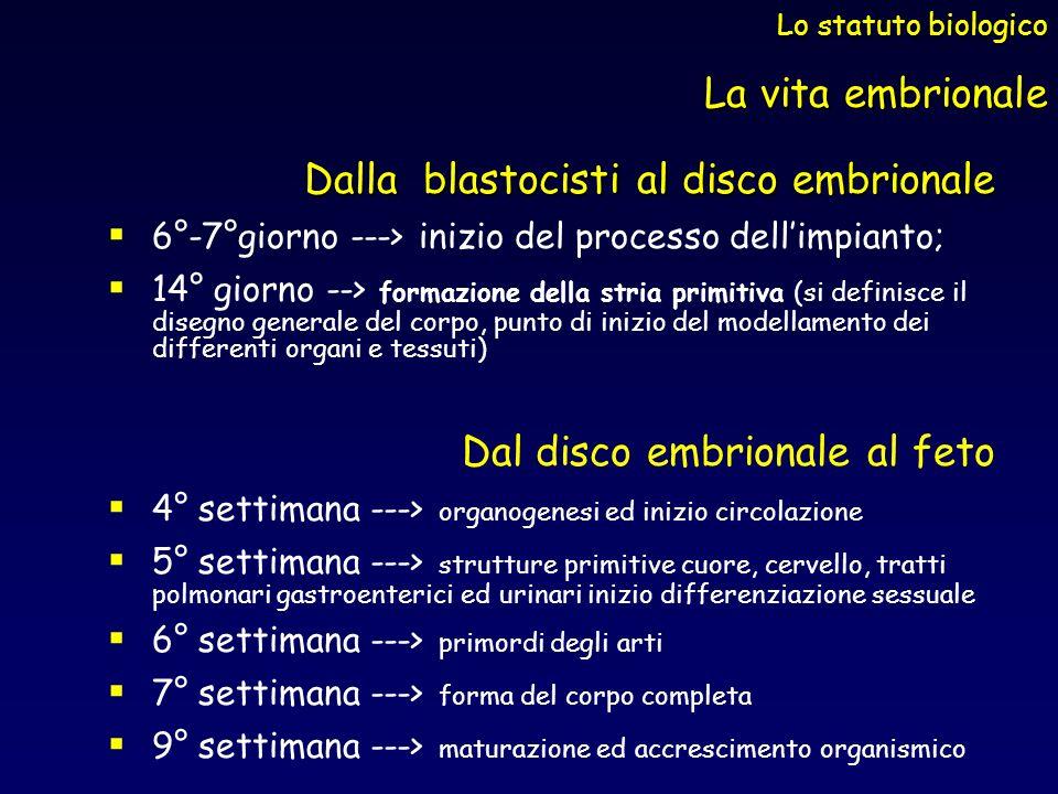 Dalla blastocisti al disco embrionale 6°-7°giorno ---> inizio del processo dellimpianto; 14° giorno --> formazione della stria primitiva (si definisce