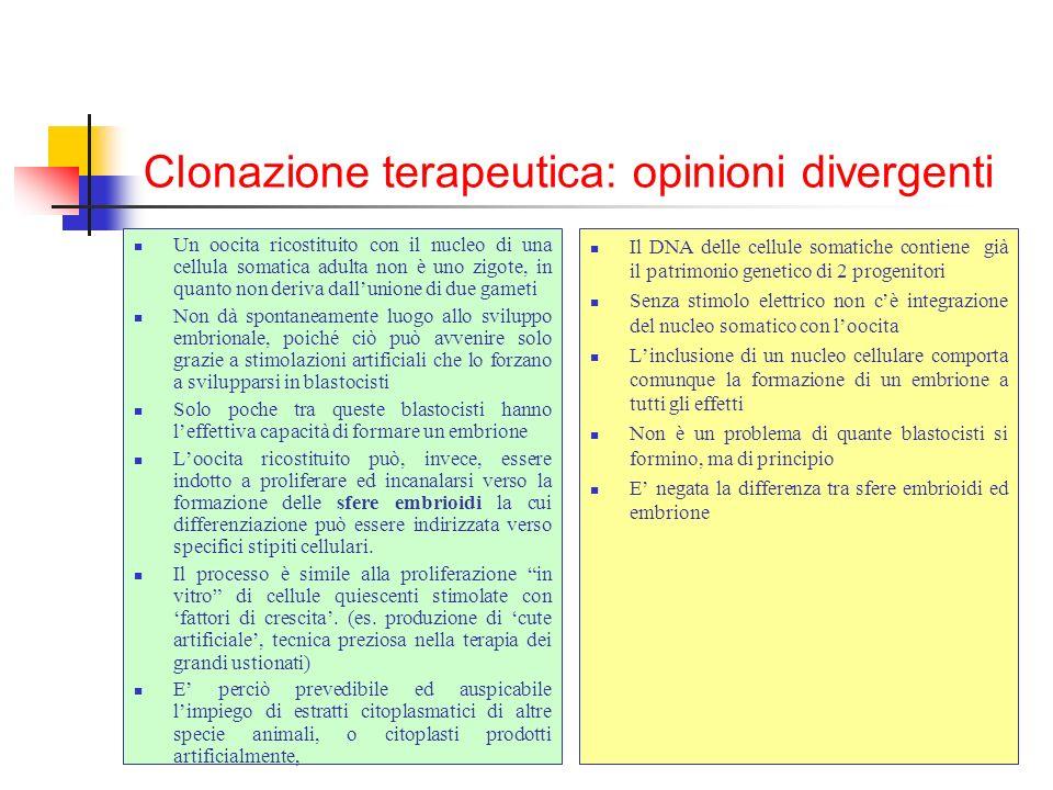 Clonazione terapeutica: opinioni divergenti Un oocita ricostituito con il nucleo di una cellula somatica adulta non è uno zigote, in quanto non deriva