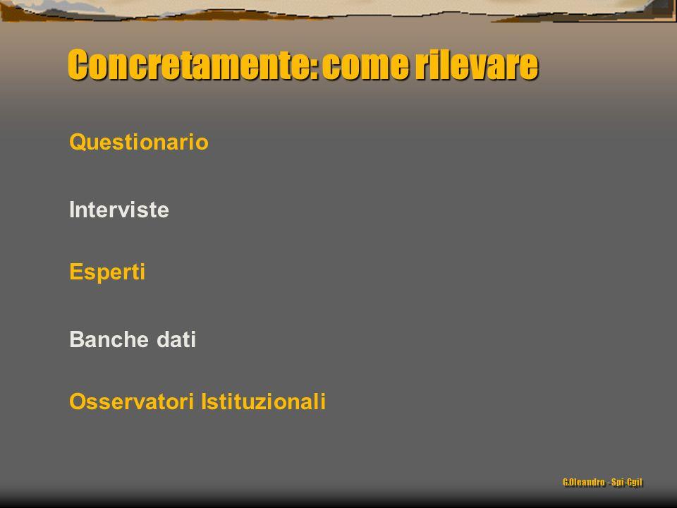 Concretamente: come rilevare Questionario Interviste Esperti Banche dati Osservatori Istituzionali G.Oleandro - Spi-Cgil