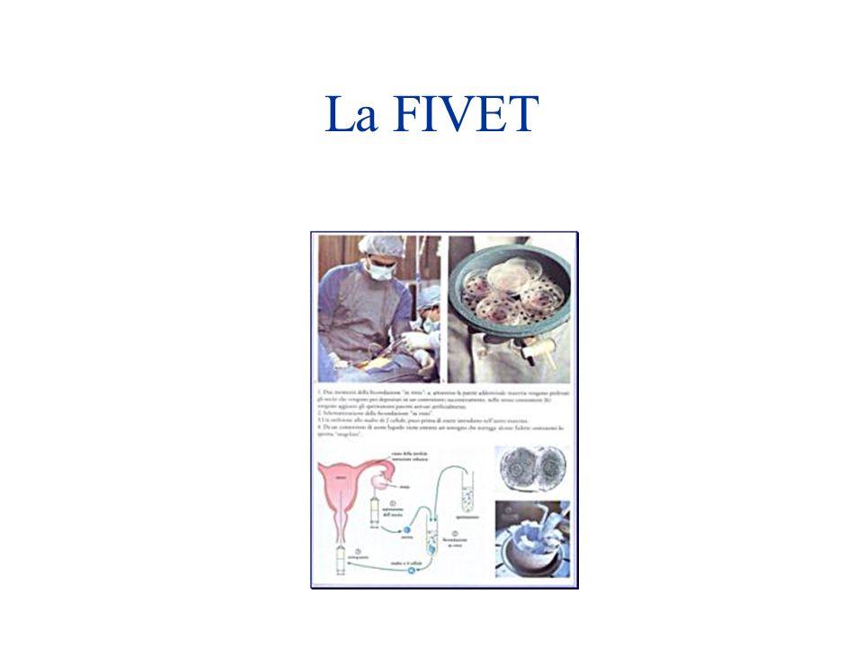 La FIVET