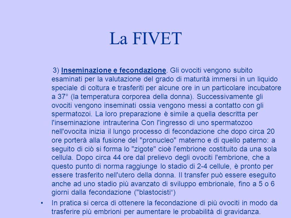 La FIVET 3) Inseminazione e fecondazione. Gli ovociti vengono subito esaminati per la valutazione del grado di maturità immersi in un liquido speciale