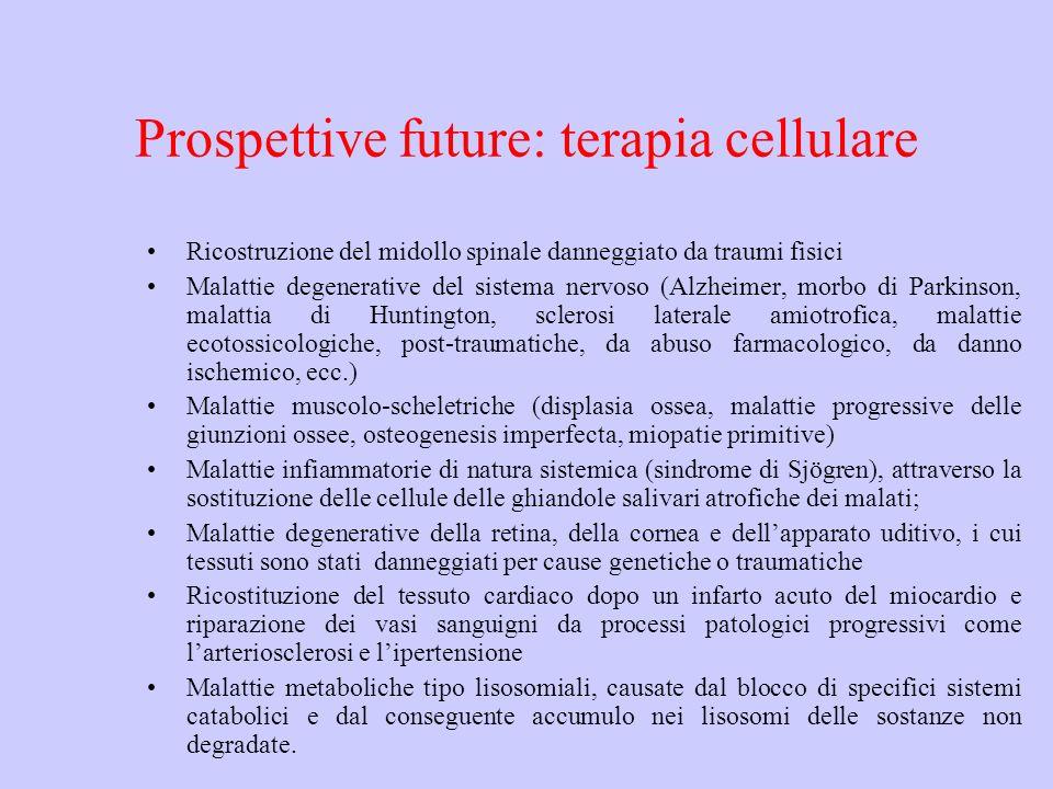 Prospettive future: terapia cellulare Ricostruzione del midollo spinale danneggiato da traumi fisici Malattie degenerative del sistema nervoso (Alzhei