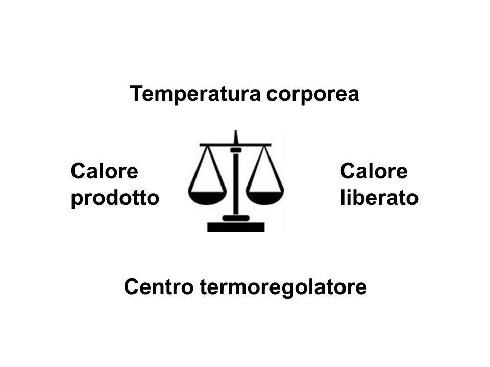 Temperatura corporea Calore prodotto Calore liberato Centro termoregolatore
