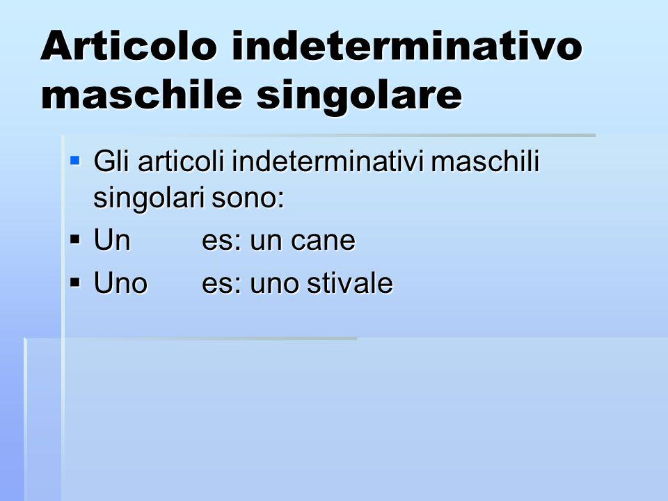 Articolo indeterminativo maschile singolare Gli articoli indeterminativi maschili singolari sono: Gli articoli indeterminativi maschili singolari sono: Unes: un cane Unes: un cane Unoes: uno stivale Unoes: uno stivale