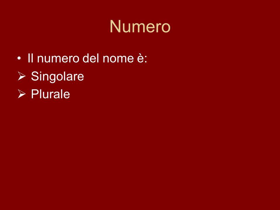 Numero Il numero del nome è: Singolare Plurale