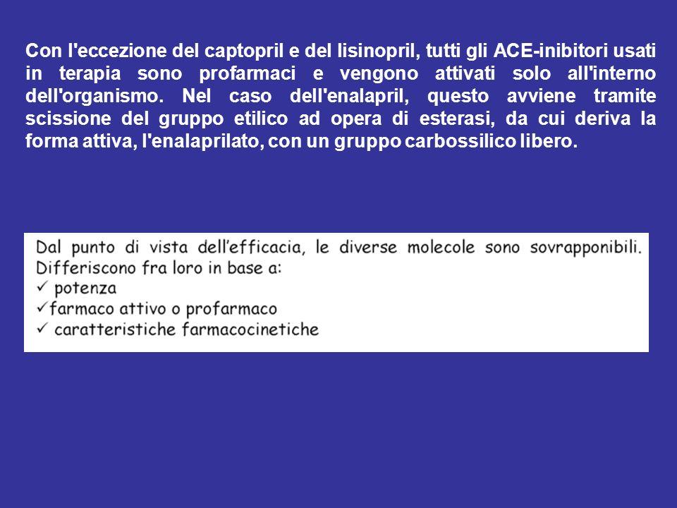 Con l'eccezione del captopril e del lisinopril, tutti gli ACE-inibitori usati in terapia sono profarmaci e vengono attivati solo all'interno dell'orga