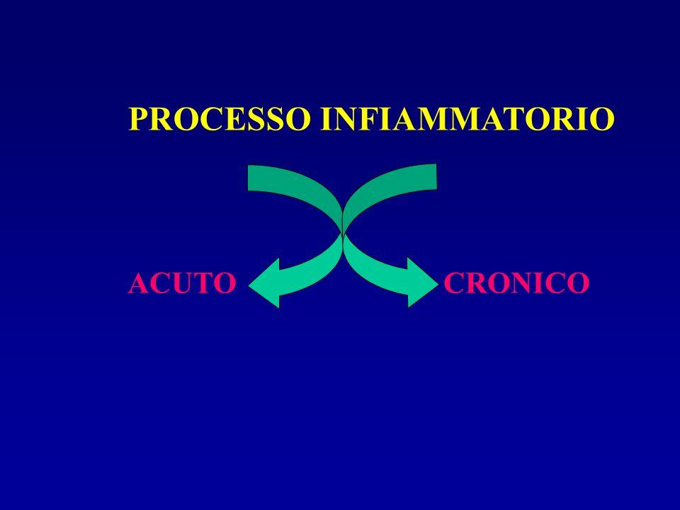PROCESSO INFIAMMATORIO ACUTOCRONICO