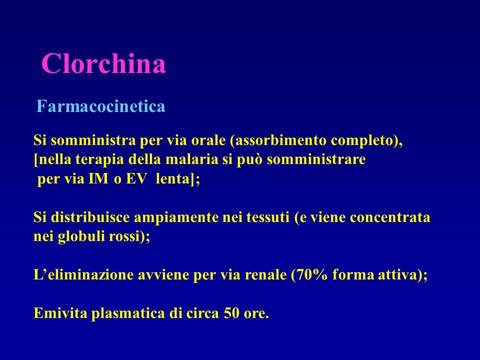 Clorchina Farmacocinetica Si somministra per via orale (assorbimento completo), [nella terapia della malaria si può somministrare per via IM o EV lent