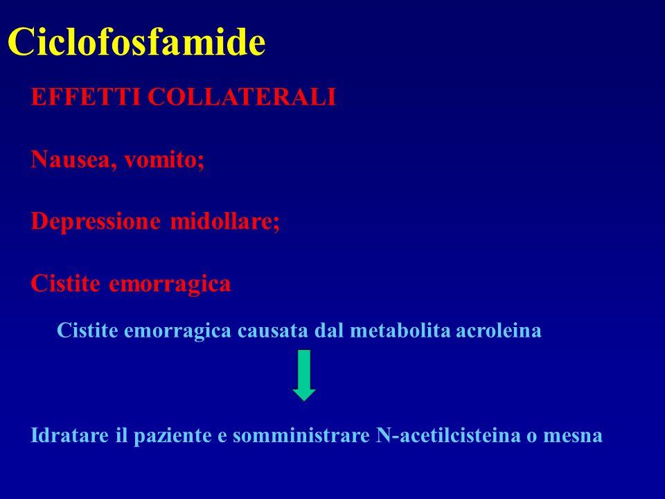 Ciclofosfamide EFFETTI COLLATERALI Nausea, vomito; Depressione midollare; Cistite emorragica Cistite emorragica causata dal metabolita acroleina Idrat